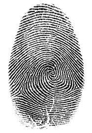 Fingerprint Recognition   PERPETUAL ENIGMA