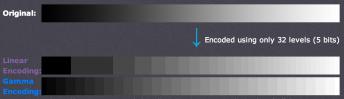 3 encoding