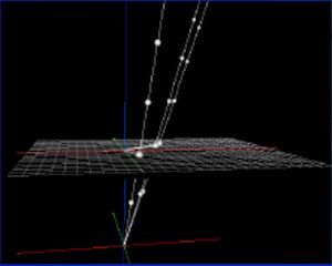 2 homogeneous coordinates