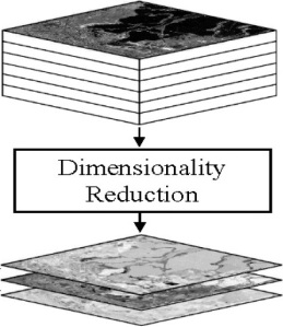 4 dimensionality reduction